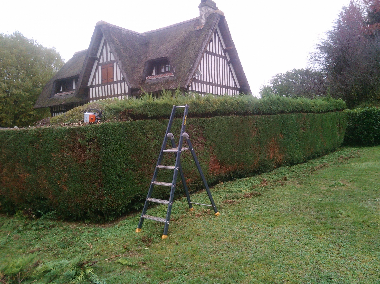 Trouver Un Jardinier A Domicile jardinier paysagiste pour création d'espaces verts auprès